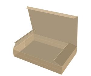 جعبه سینی شکل